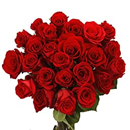 100 Red Roses Special for Mother\'s Day
