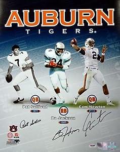 Autographed Bo Jackson and Sullivan Photo - Cam Newton & 16x20 Auburn - PSA DNA... by Sports+Memorabilia