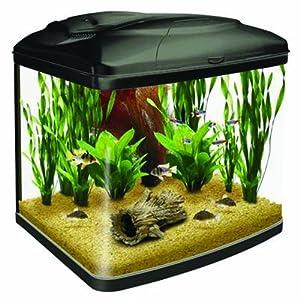 Interpet original fish pod glass aquarium fish tank 48 for Amazon fish tank