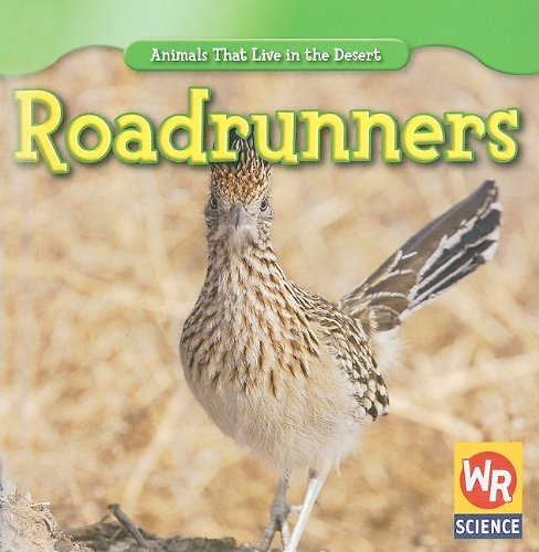 Roadrunners (Animals That Live in the Desert)