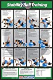 Power Systems Stability Ball Training Poster