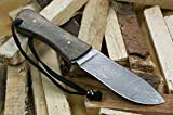 "Knife King ""Walt Jr."" Damascus Handmade Hunting Knife. Comes with a sheath."