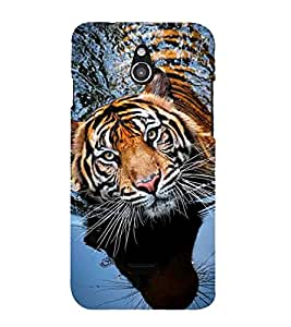 Vizagbeats Tiger in water Back Case Cover for Infocus M2