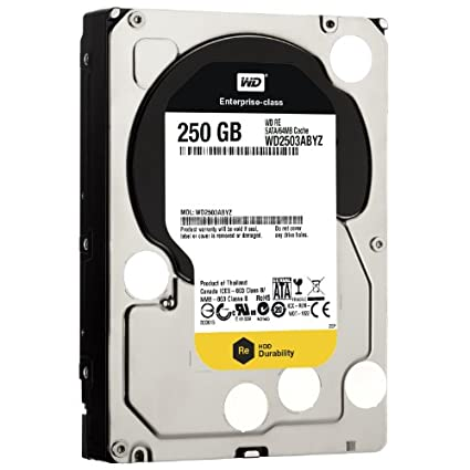 WD RE SATA III (WD2503ABYZ) 250GB internal Hard Drive