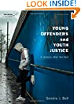 Young Offenders and Youth Justice: A...