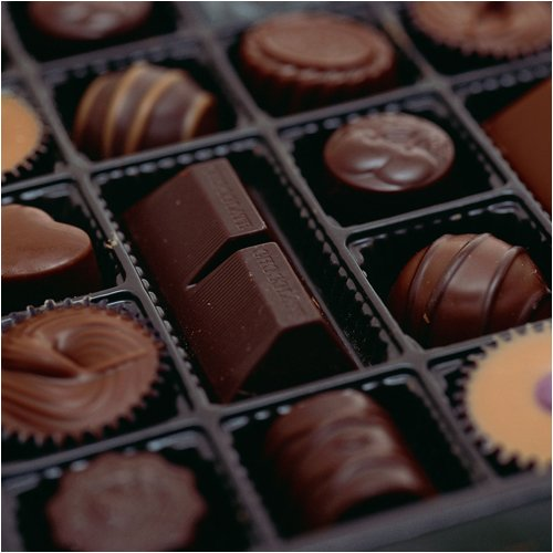 Gourmet Chocolate of the Month Club - 12 Months with Free Shipping