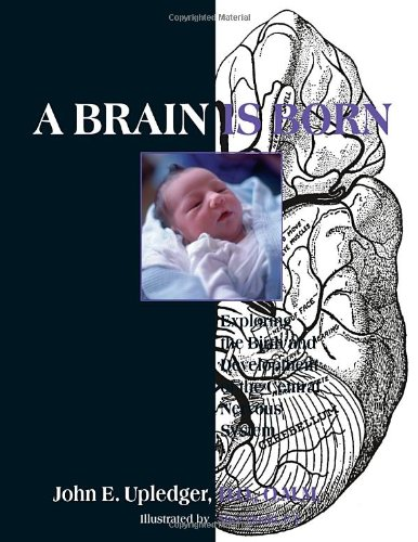 A Brain Is Born: Exploring the Birth and Development of the Central Nervous System