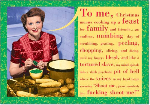 Set of 12 Somebody Shoot Me Christmas Cards