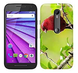 WOW Printed Designer Mobile Case Back Cover For MOTOROLA MOTO G3 G 3rd Gen / MOTO G TURBO