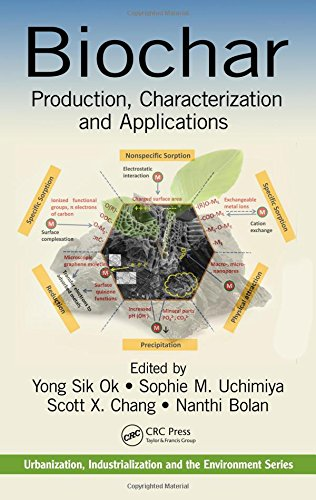 Biochar: Production, Characterization, and Applications (Urbanization, Industrialization, and the Environment)