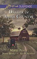 Danger in Amish Country: Fall from Grace\\Dangerous Homecoming\\Return to Willow Trace