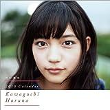 川口春奈 2010年 カレンダー