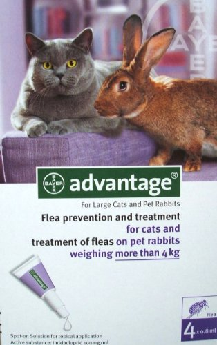 12 MONTH Advantage Purple for cats over 9lbs. (Multi Advantage For Cats compare prices)