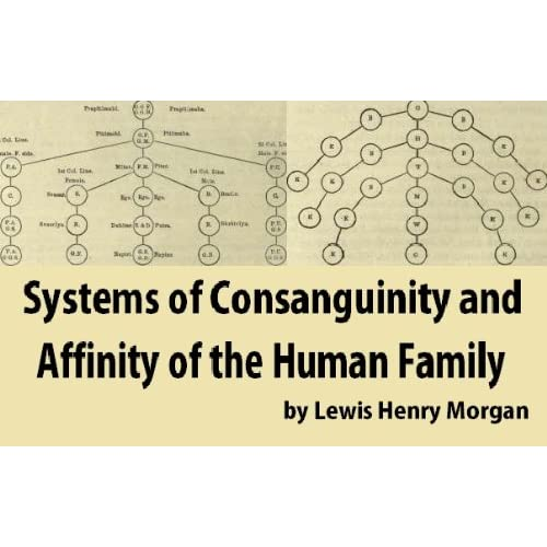Image: Systems of Consanguinity and Affinity of the Human