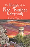 img - for The Knights of the Red Feather Labyrinth book / textbook / text book