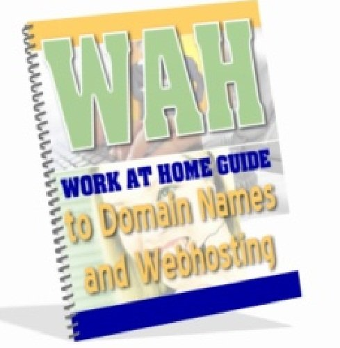 Work At Home Guide to Domain Names and Webhosting AAA+++