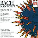 Bach, J.S.: Cantatas - Bwv 50, 79, 80, 192 (Rotzsch)