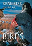 Real-size Guide to NZ Birds