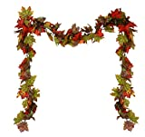9′ Fall Traditions Pumpkin, Gourd and Berry Artificial Thanksgiving Garland Picture