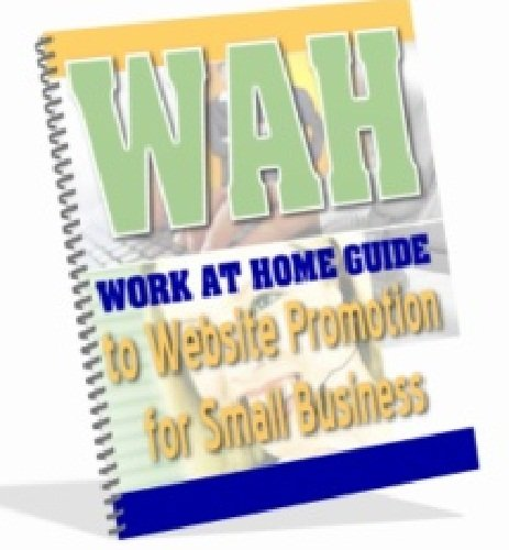 Work At Home Guide to Website Promotion for Small Business AAA+++