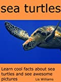 Sea Turtles - Learn Cool Facts about Sea Turtles and See Awesome Pictures