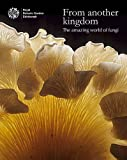 From Another Kingdom: The Amazing World of Fungi
