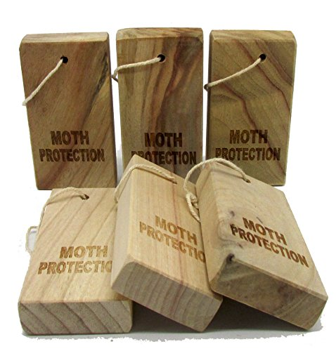 Moth away - Household Essentials Fresh Cinnamomum Camphora Root Storage Accessories for Repeling Pests (6 piece) (Moth Repellent Spray compare prices)