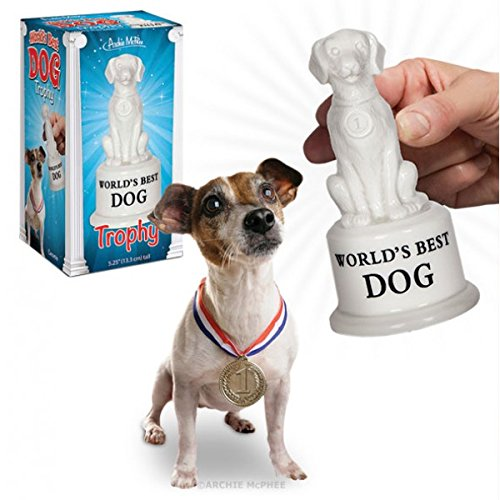 Accoutrements World's Best Dog Trophy