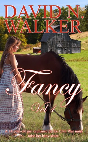 Book: Fancy by David N. Walker