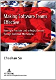 Making Software Teams Effective: How Agile Practices Lead to Project Success Through Teamwork Mechanisms