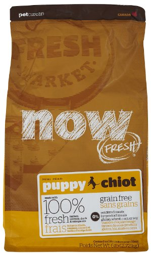 Now! 815260003346 Fresh Grain Free Puppy Food Bag, 6-Pound front-1057863