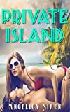 img - for Private Island (Beach Vacation Billionaire Erotica) book / textbook / text book