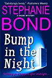 Bump in the Night (a short humorous mystery)