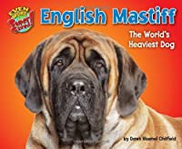 English Mastiff: The World's Heaviest Dog (Even More Supersized!)
