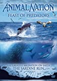 Animal Nation - Feast Of Predators [DVD]