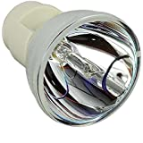 Kingoo Replace Projector Bulb Lamp RLC-049 For VIEWSONIC PJD6241 PJD6381 PJD6531W