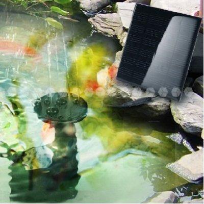 Fertilizer pond spikesplant carepetsolutions blog medical for Fish pond fertilization