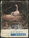 img - for Animals and Water book / textbook / text book