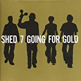 Shed 7 Going for gold
