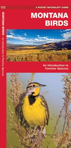 Montana Birds: An Introduction to Familiar Species (State Nature Guides)