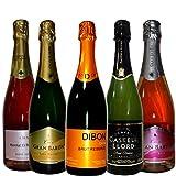 全て豪華シャンパン製法 スパークリング・スペイン・カヴァ 5本セット 750ml 5本