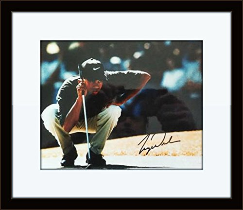 Framed Tiger Woods Photo Authentic Autograph with Certificate of Authenticity (Tiger Woods Photo compare prices)
