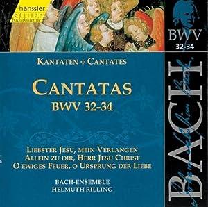 Bach: Cantatas, BWV 32-34 (Edition Bachakademie Vol 11) /Rilling