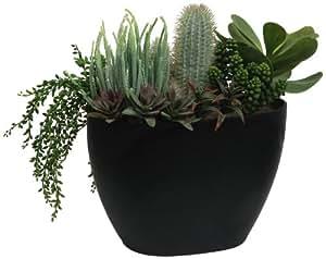 Branches blooms arrangement de plantes grasses et for Amazon plante artificielle