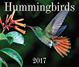 img - for Hummingbirds 2017 book / textbook / text book