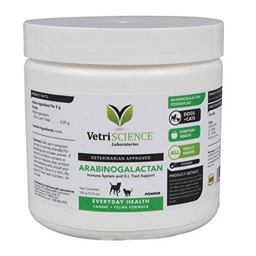 Dog Immune System Supplements