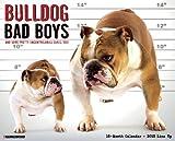 Bulldog Bad Boys 2015 Wall Calendar