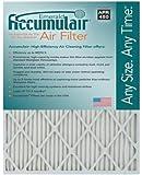 Accumulair Emerald 20x25x1 (19.75x24.75) MERV 6 Air Filter/Furnace Filters (4 pack)