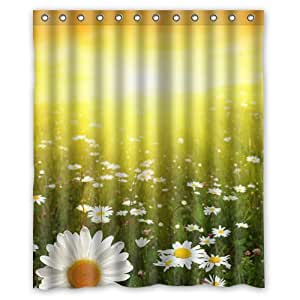 Amazon.com: daisies at sunset sunrise Shower Curtain 60 x 72 Inch