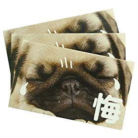 《犬らくがき/悔》ぽち袋3枚セット☆面白お年玉袋/ポチ袋通販☆
